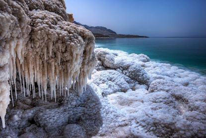 Visualizza i dettagli per Del Mar Morto
